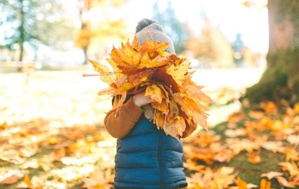 décoration véranda automne