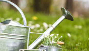 Entrepreneur parcs et jardins